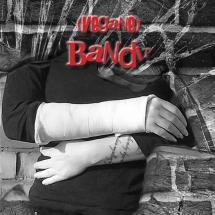 Der einarmige (vegane) Bandit Cover